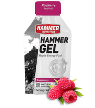 Load image into Gallery viewer, Gels & Gel Jugs - Hammer Nutrition UK Official Distributor