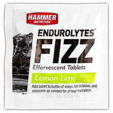 Load image into Gallery viewer, Endurolytes Fizz - Hammer Nutrition UK Official Distributor