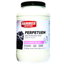 Load image into Gallery viewer, Perpetuem (Long Distance energy fuel ) - Hammer Nutrition UK Official Distributor