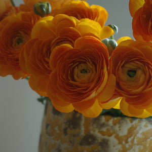 Bouquet de 12 renoncules orange Lambada