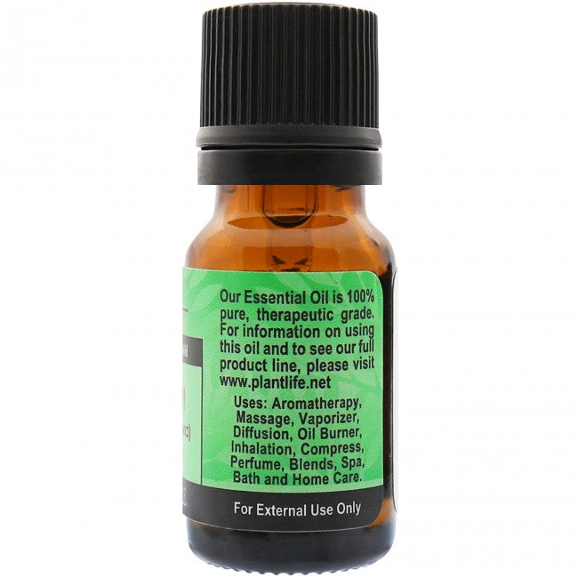 Marjoram Sweet - Essential Oil~Therapeutic Grade