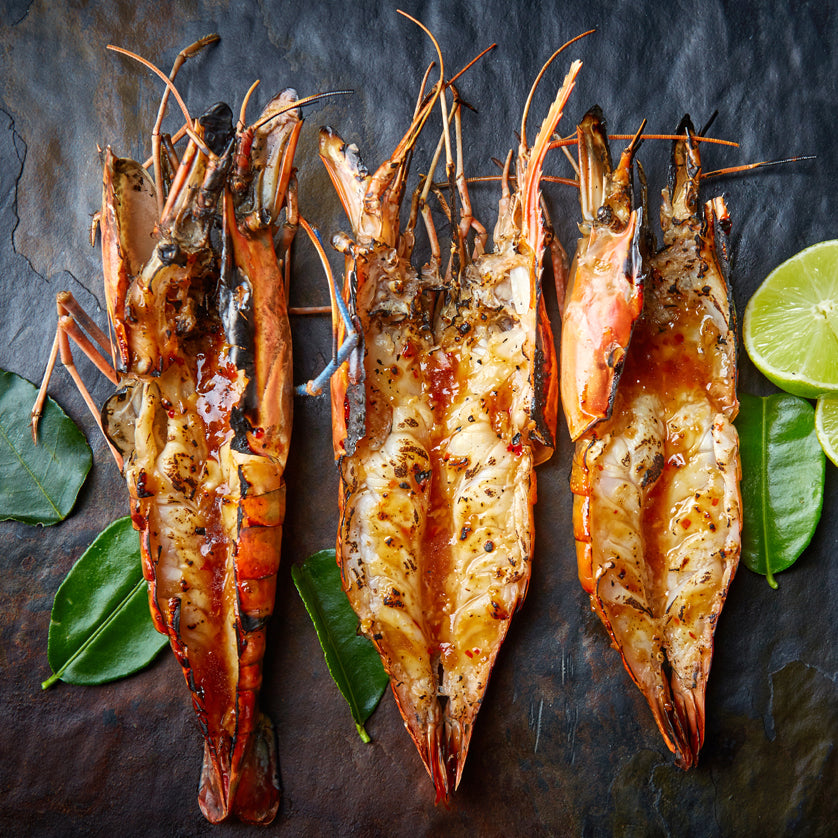 New Caledonia Shrimp / French Blue Prawns