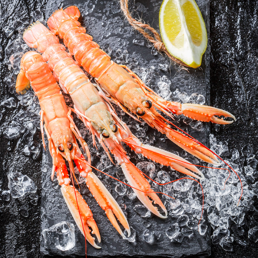 Langoustines for sale online at Kolikof.com. Best source for online caviar and seafood.