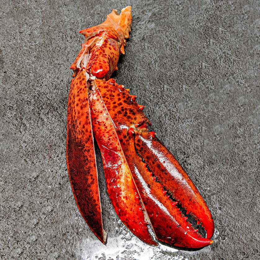Order Best Cut Lobster Claws