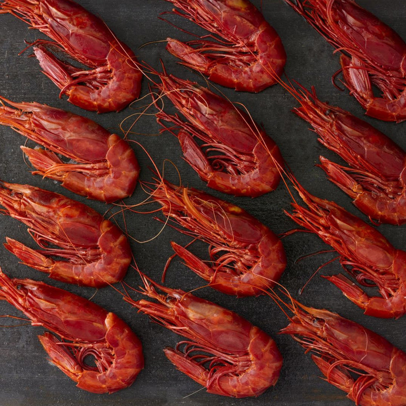 Spanish Red Carabineros Jumbo Prawns