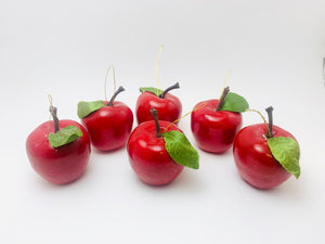 6 Vintage Sears Christmas Apples