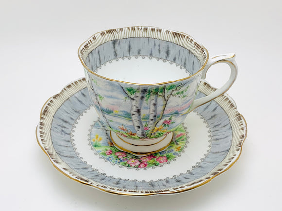 1950's Royal Albert Crown China Silver Birch Tea Cup and Saucer