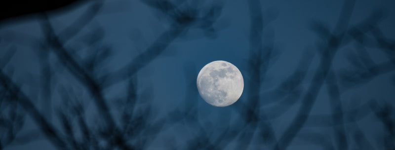 Full Moon Penumbral Eclipse