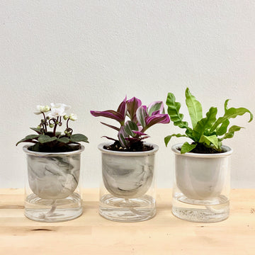 Self-Watering Marbled Planter