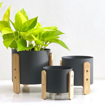 Axel Planter (Smoke)