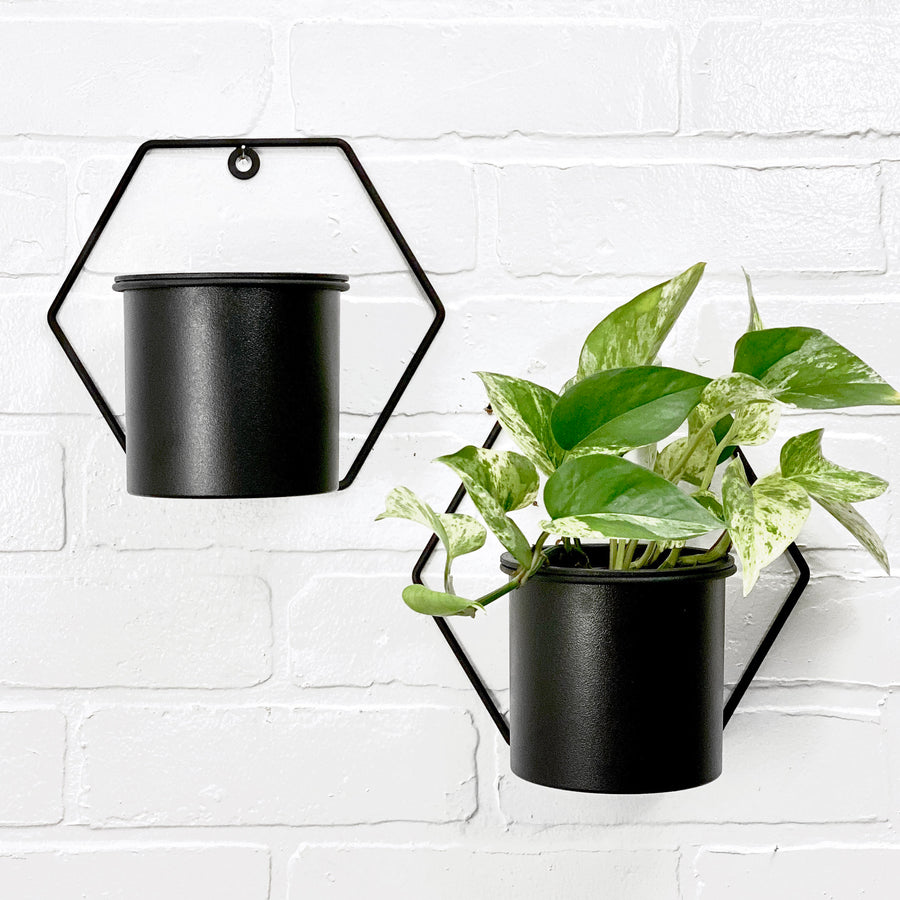 Tyra Hanging Planter