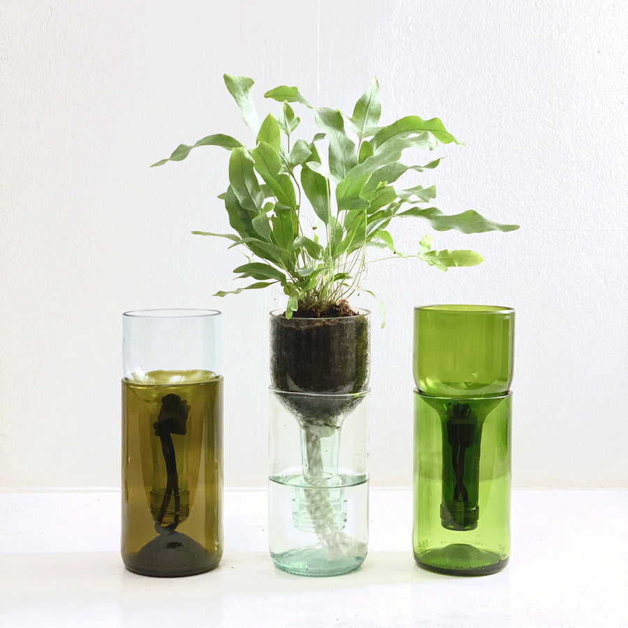 Remark Glass Self-Watering Planter