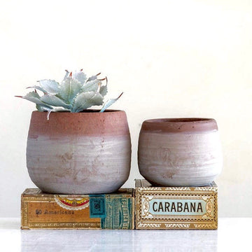 Whitewashed Terra-cotta Pot