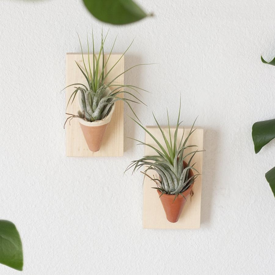 Ceramic + Wood Wall Planter