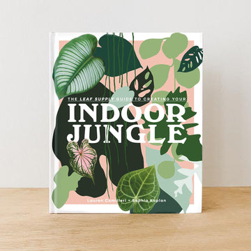 Indoor Jungle (Hardcover)
