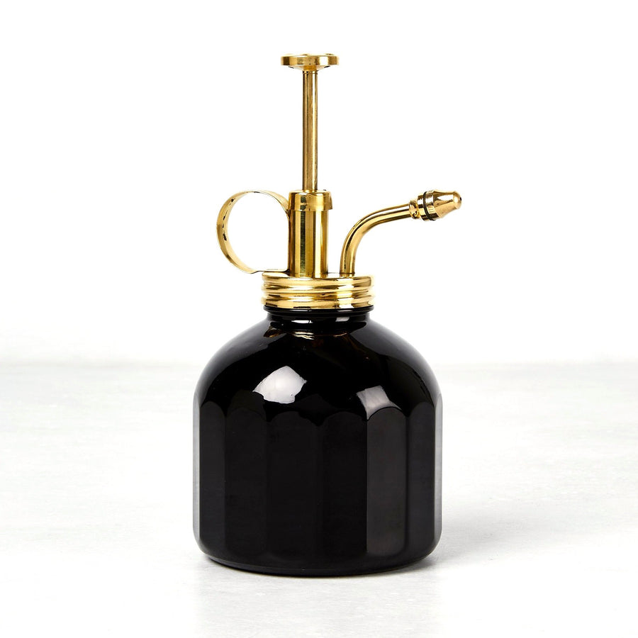 Black Glass and Brass Plant Mister
