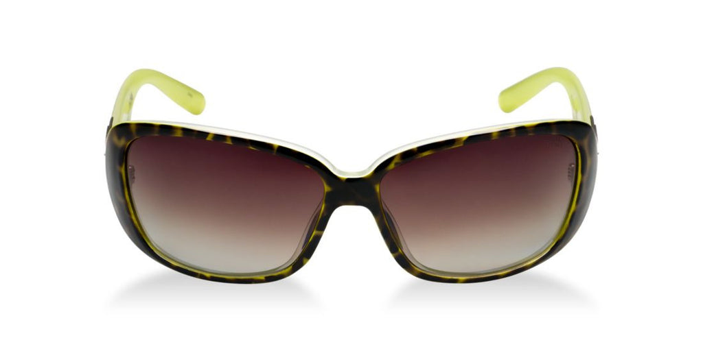 Smith Optics SHOREWOOD  Green / Brown