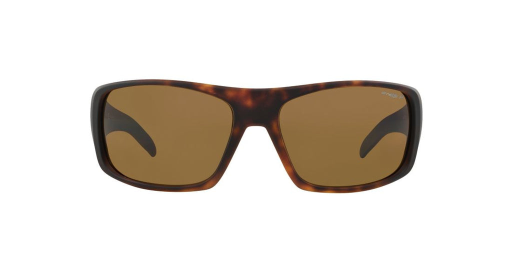 Arnette AN4179 LA Tortoise / Brown