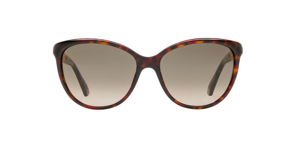 Gucci GG 3692/S Tortoise / Brown