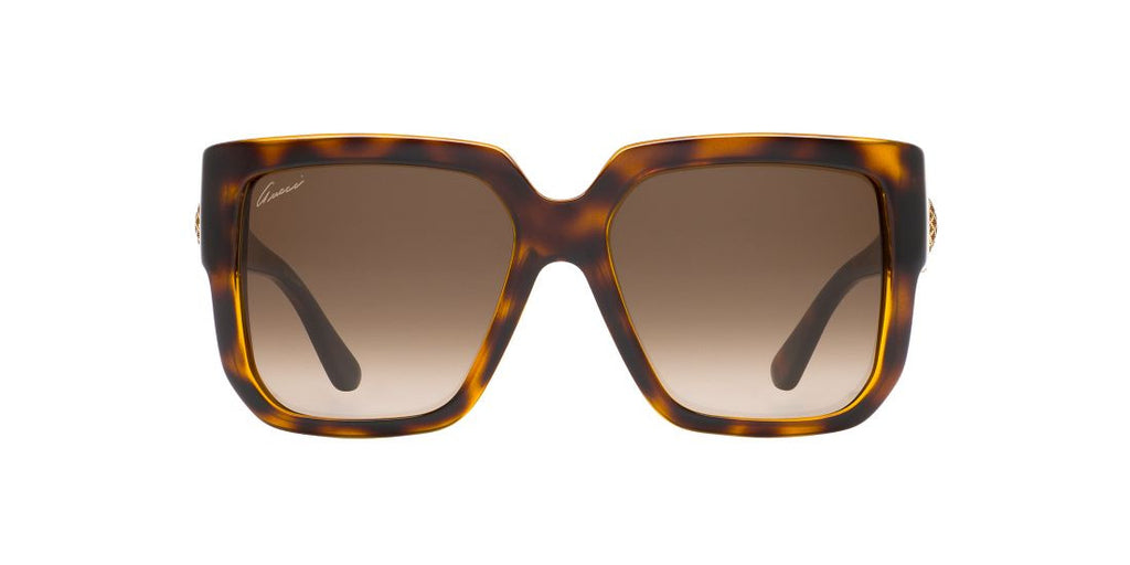 Gucci GG 3713/S Tortoise / Brown