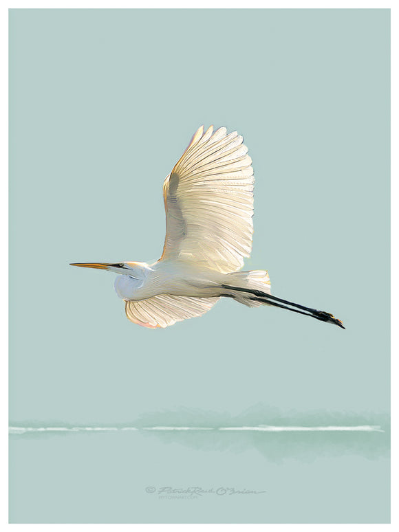 Egret Fly Teal
