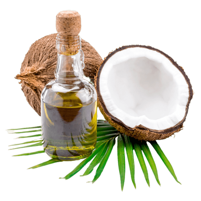 Coconut Flavour Oil - Soap & More the Learning Centre Inc