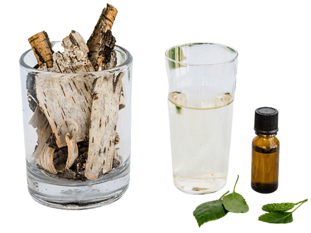 Birch Bark, Sweet Essential Oil - Soap & More the Learning Centre Inc