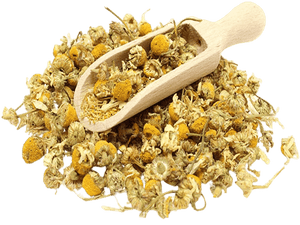 Chamomile Flowers Egyptian Pesticide Free - Soap & More the Learning Centre Inc
