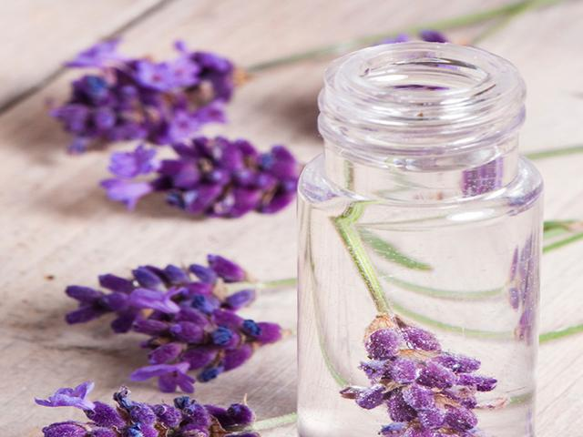 Lavender Hydrosol - Soap & More the Learning Centre Inc
