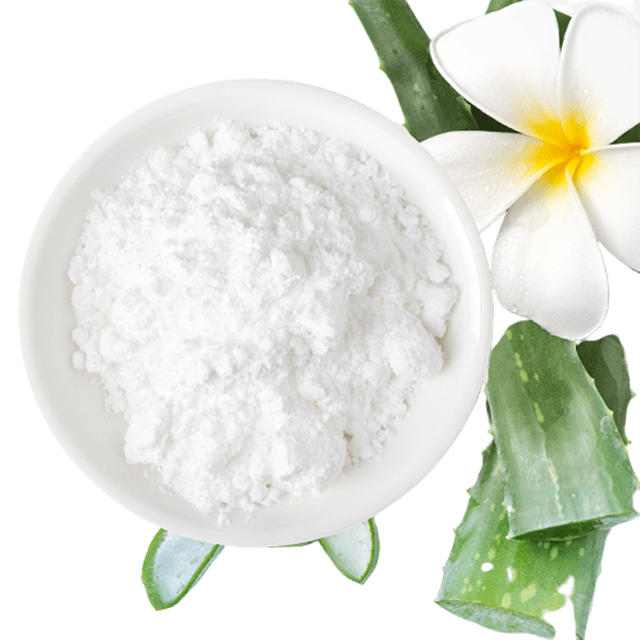 Aloe Vera 200X Powder Organic - Soap & More the Learning Centre Inc