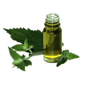 Catnip Essential Oil Canada 80% Nepetalactone - Soap & More the Learning Centre Inc
