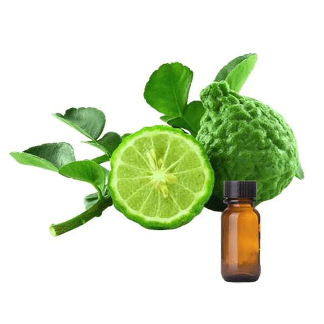 Bergamot Essential Oil (Bergapteen Free) - Soap & More the Learning Centre Inc
