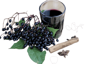 Elderberries Whole Organic - Soap Making Supplies, Essential Oils, Fragrance Oils at Calgary, Alberta Soap and More the Learning Centre Inc in Canada