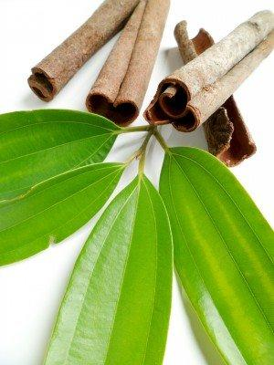 Naissance 100% pure steam distilled Cinnamon Leaf Essential Oil
