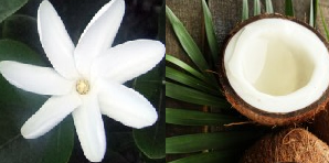 Naissance Monoi Tahitian Gardenia Flower Infused Coconut Oil