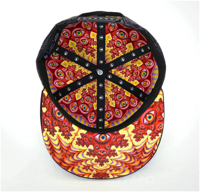 Vision Snapback Hat by Alex Grey