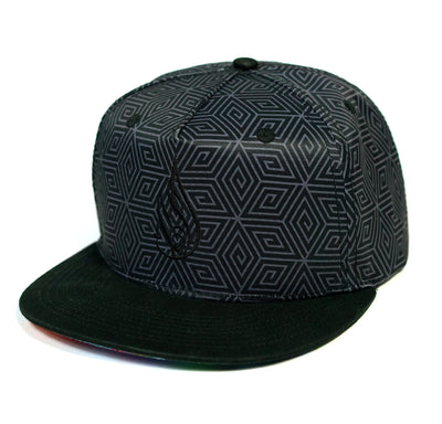 Neurogenesis Snapback Hat by E Howard & Brian Scott Hampton