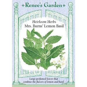 Basil - Heirloom Mrs. Burns' Lemon
