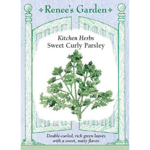 Parsley - Sweet Curly Kitchen Herbs