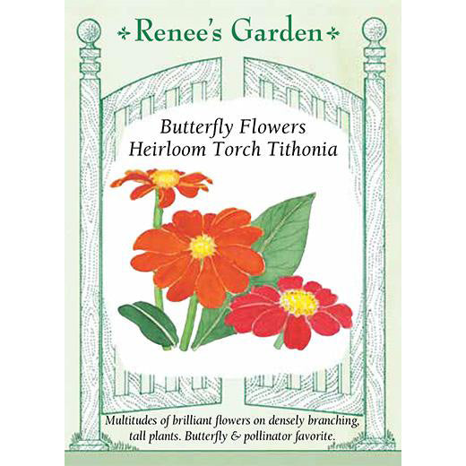 Tithonia - Butterfly Flowers Heirloom Torch