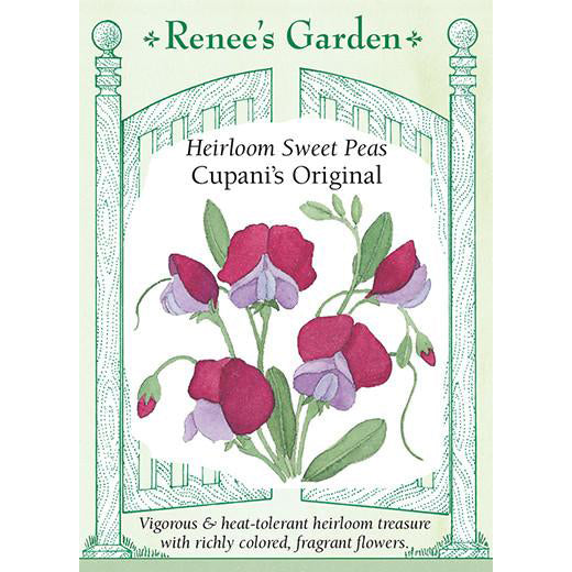 Sweet Peas - Heirloom Cupani's Original