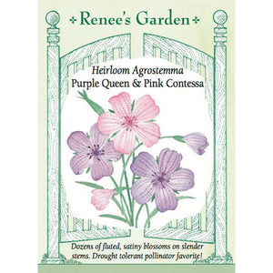 Agrostemma - Heirloom Purple Queen & Pink Contessa