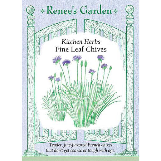 Chives - Fine Leaf Kitchen Herbs
