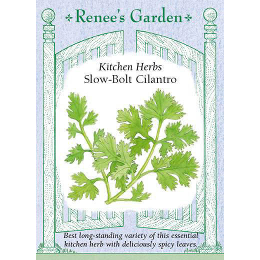 Cilantro - Slow-Bolt Kitchen Herbs