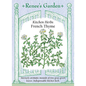 Thyme - French Kitchen Herbs