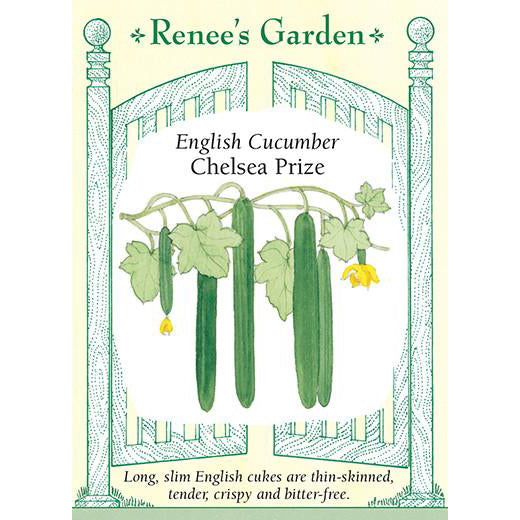 Cucumber - English Chelsea Prize