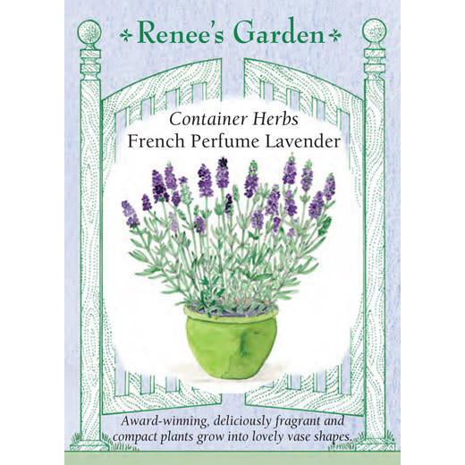 Lavender - French Perfume Container Herbs