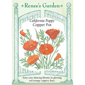 Poppies - California Copper Pot