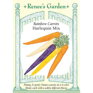 Carrots - Rainbow Harlequin Mix