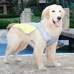 Dog's Summer Cooling Vest ( Buy 2 Get Extra 10% Off ) TopViralPick